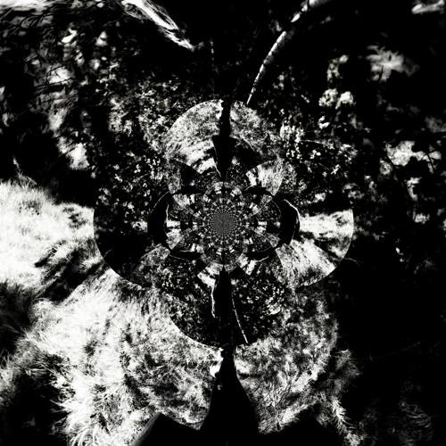 olivia thorell's avatar