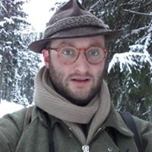 Philipp Dreihann-Holenia's avatar