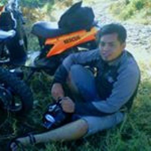 ASfian Septa Hartanto's avatar