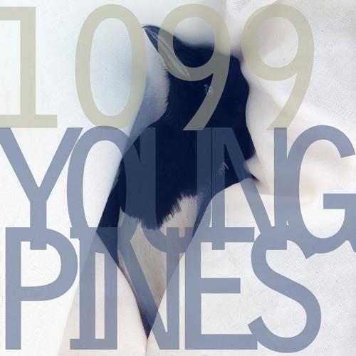 1099band's avatar