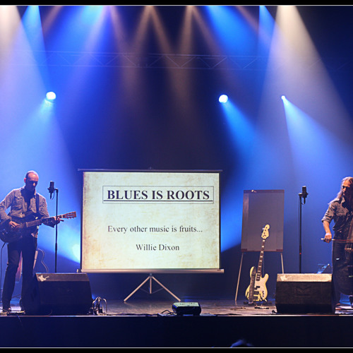 Blues is Roots's avatar