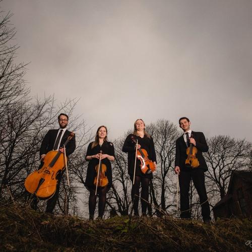 Didsbury String Quartet's avatar