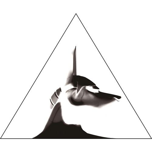 PyCairo Records's avatar