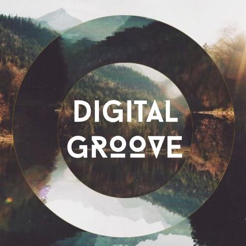 Digital Groove's avatar