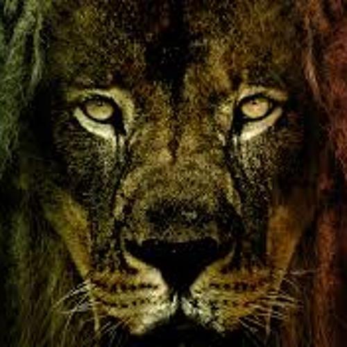 Dark leo's avatar