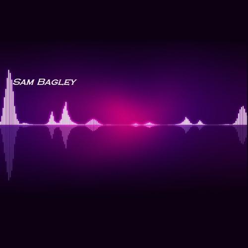 Sam Bagley's avatar