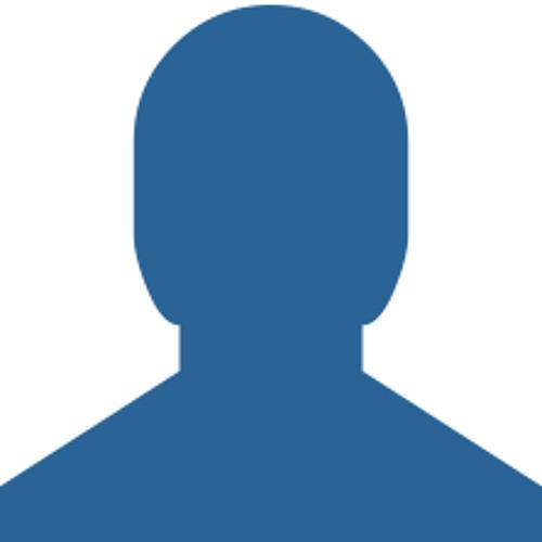 Igor Brigadir's avatar