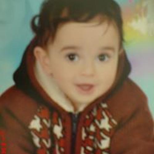 Rania N Masry's avatar
