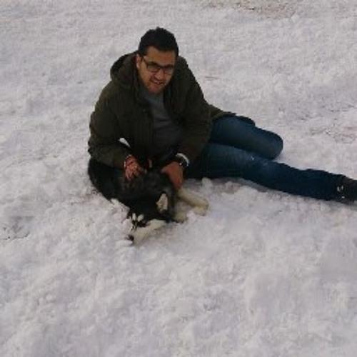 Hossein Akhavan's avatar