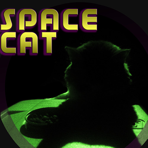 Meow I'm a Space Cat's avatar