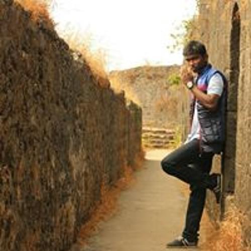 Prateek Kaleshwarwar's avatar