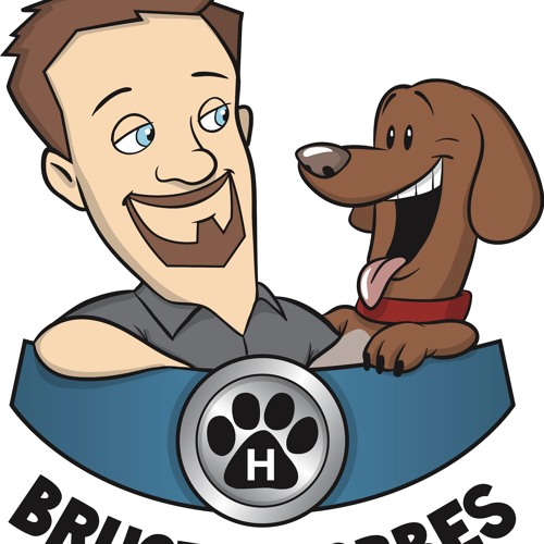 Bruce And Hobbes Podcast: Annemarie Burgess, Italian Greyhound Rescue