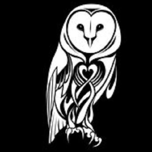 The Barn Owls's avatar