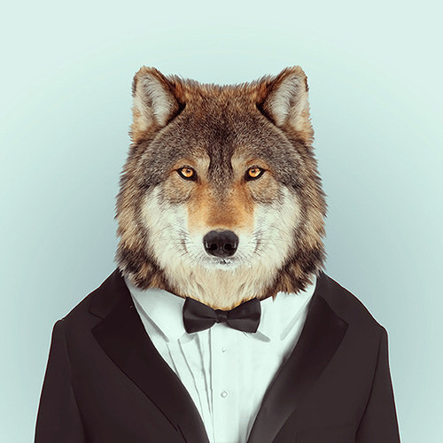 JON DECK's avatar