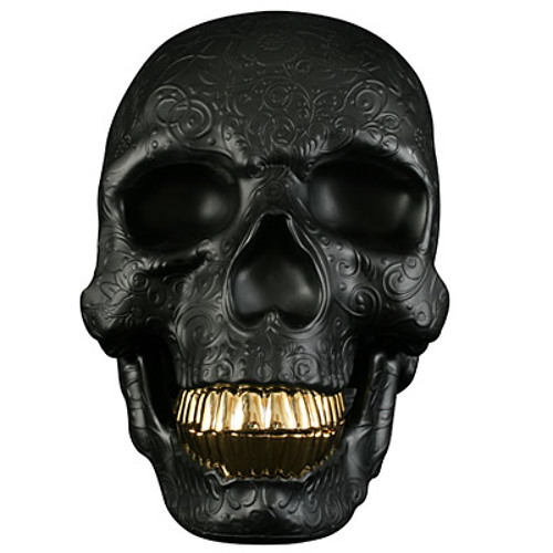 Iaro Slav's avatar