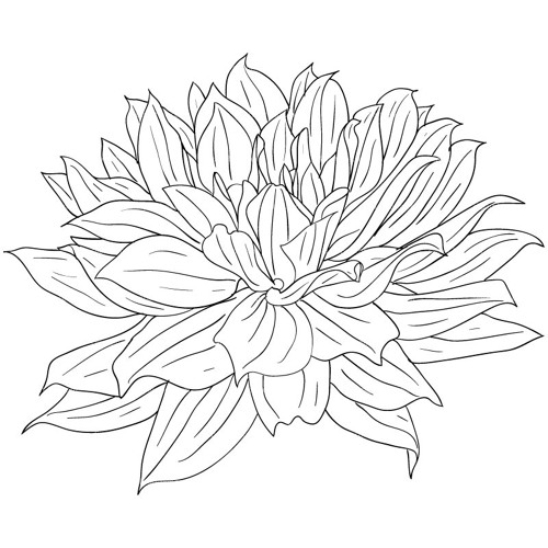 Aphoh's avatar