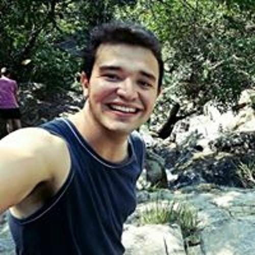 Pedro Abrão's avatar