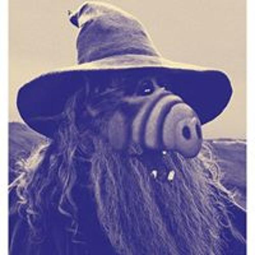 Zackarias Johansson's avatar