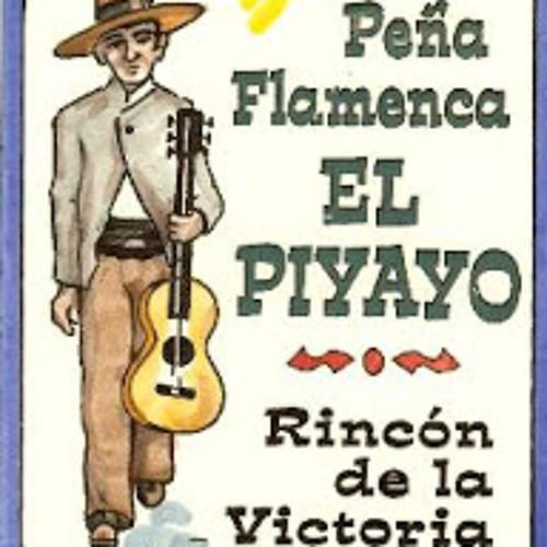 "Peña Flamenca ""El Piyayo""'s avatar"