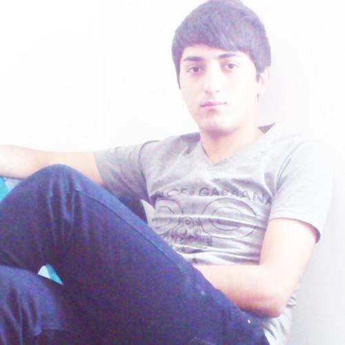 Peyman Gholami's avatar