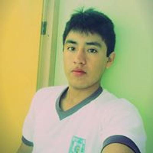 Daniel Oblitas Fernandez's avatar