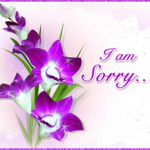 i'm sorry's avatar