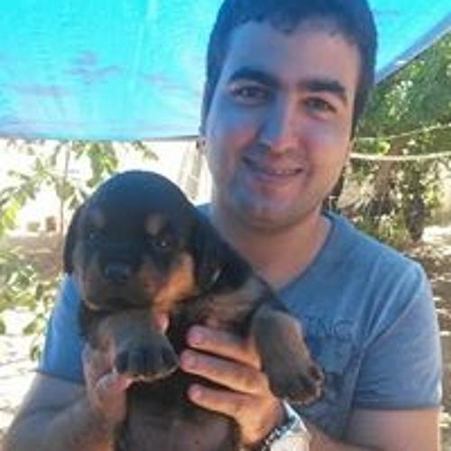 Diego Monteiro's avatar