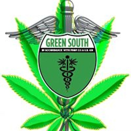 Green South's avatar