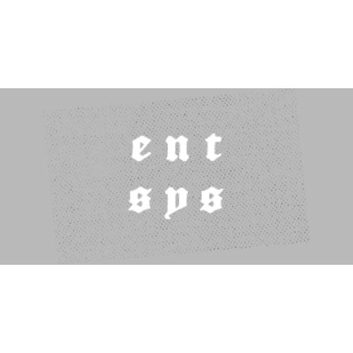 Entertainment Systems's avatar