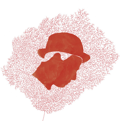 leonardo marques's avatar