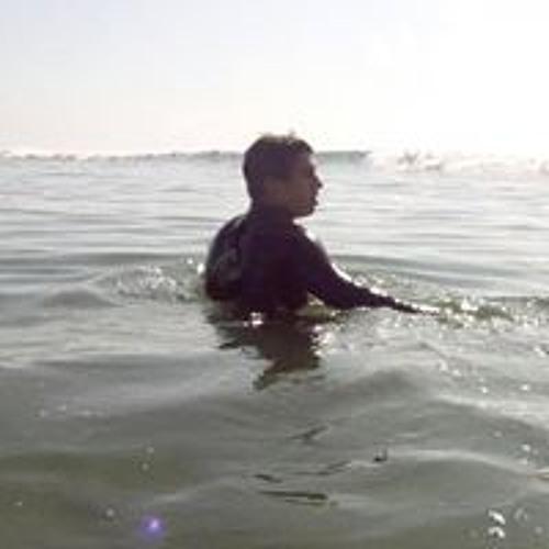Vinny Trujillo's avatar