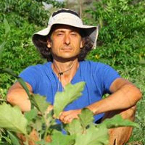 Yaakov Aglamaz's avatar