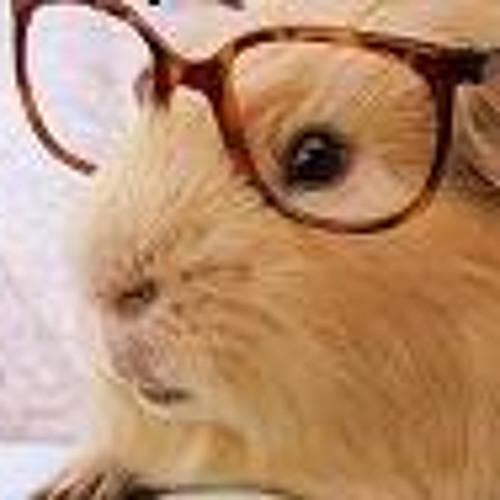 HamsterHam's avatar