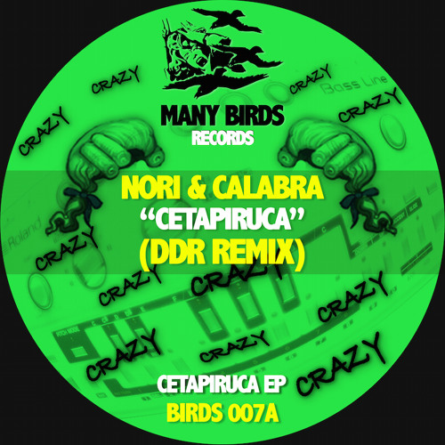 Many Birds Records's avatar