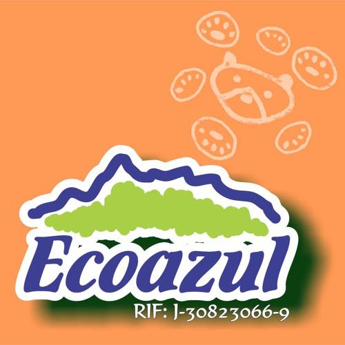 Ecoazul Venezuela's avatar