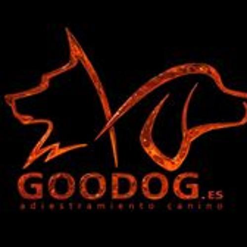 Goodog Adiestra's avatar