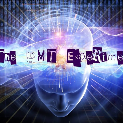 The DMT Experiment's avatar