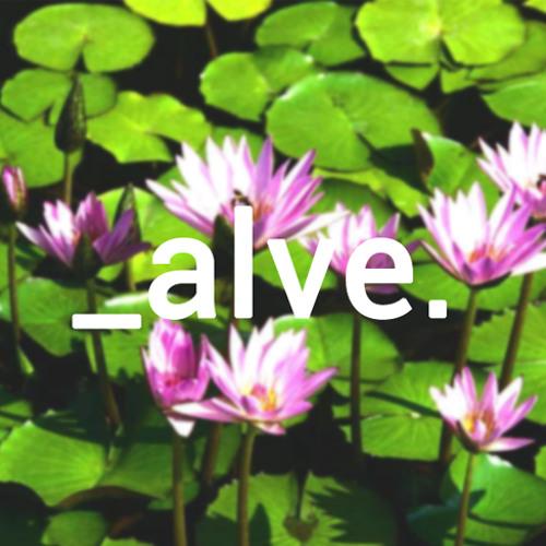 _alve.beats's avatar