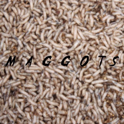 Maggots's avatar