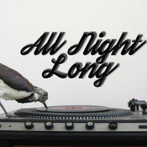 All Night Long's avatar
