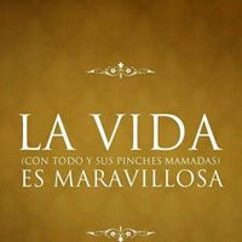 La Chula's avatar