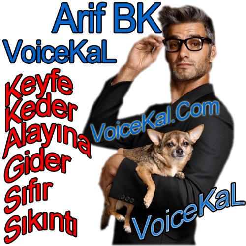 SesliKal's avatar