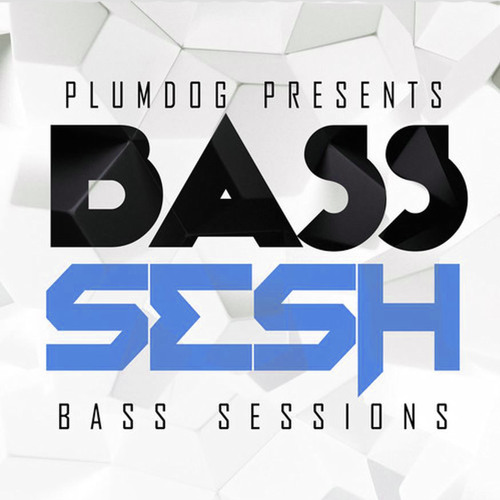 BASS SESSIONS's avatar