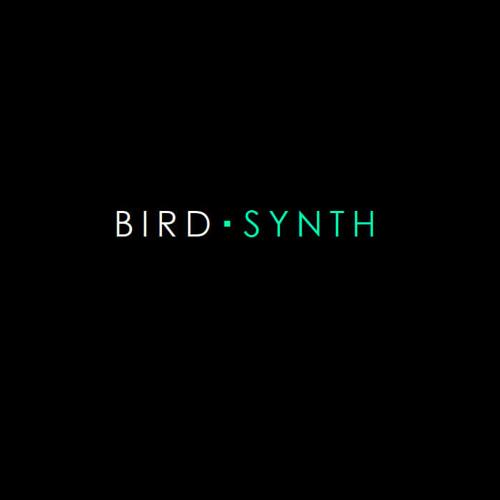 Birdsynth's avatar