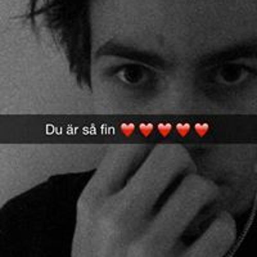 Johan Nordin's avatar