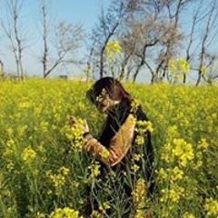 02 - Chehra Kya Dekhte Ho-(MyMp3Singer.com).mp3