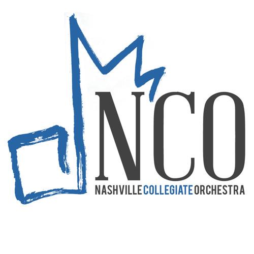 Nashville Collegiate's avatar