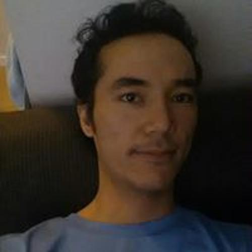 Mahram Safdari's avatar