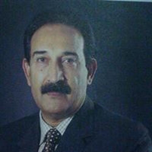 Ramzan Shahid's avatar