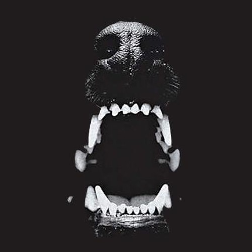 LaNictofilia.'s avatar
